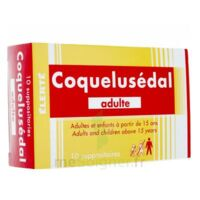 COQUELUSEDAL ADULTES, suppositoire à QUEVERT