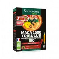 Santarome Bio Maca 1500 Tribulus Ginseng Gingembre Solution buvable 20 Ampoules/10ml à QUEVERT